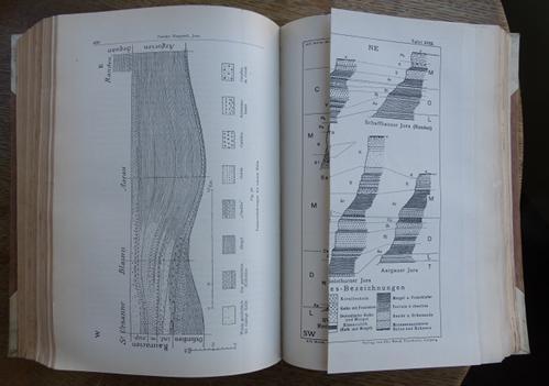 Lingua Terrae Books Geology Alps