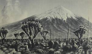 Lingua terrae books volcanoes eathquakes
